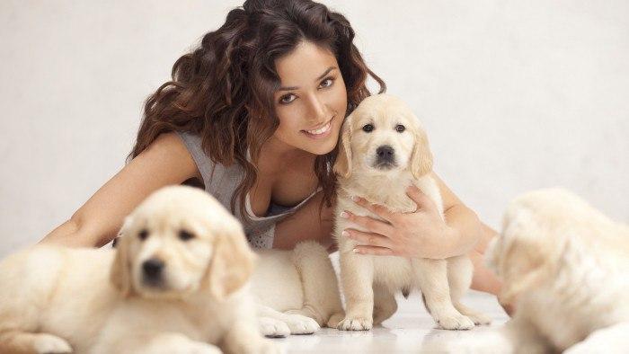 Дай, друг, на счастье лапу мне. Какие породы собак для квартиры лучше?