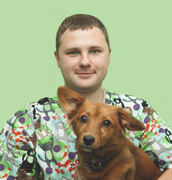 Ушной клещ у собак: причины появления, лечение, профилактика
