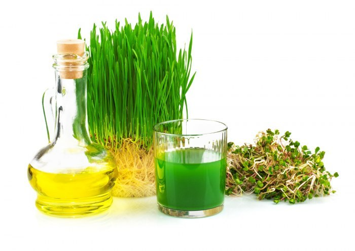 Проросшие зерна пшеницы: польза и вред, как приготовить ростки?